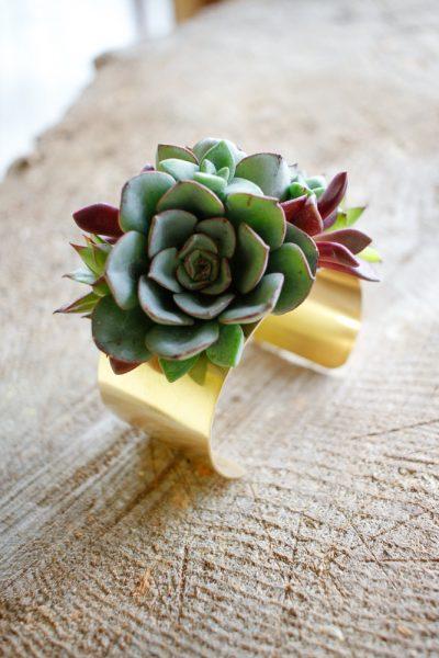 Living succulent Jewelry bracelets