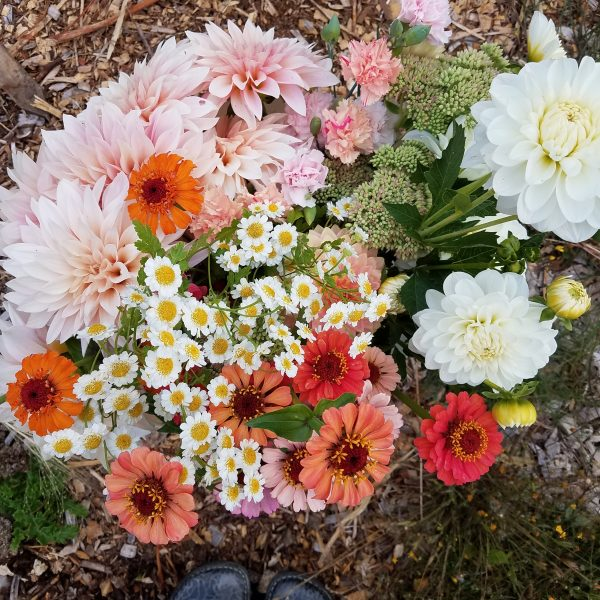 Just harvested locally grown DIY wedding flowers
